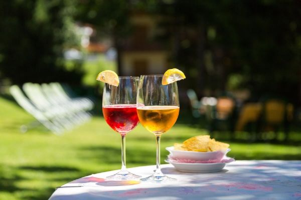 Aperitivo in giardino all'hotel Alpina